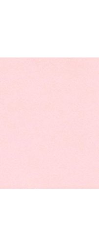 Cart Inkjet 14 (11 x 17 Cardstock - Candy Pink (50 Qty.) | Perfect for Crafting, Invitations, Scrapbooking, 11x17 Photos, Brochures | Printable | 100lb. Text Weight | 1117-C-14-50)
