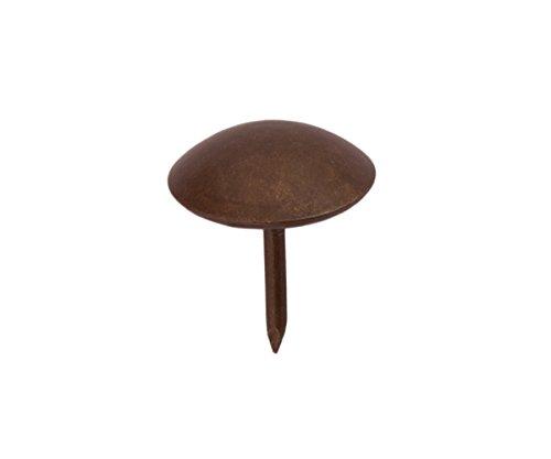 Sysfix 3312623 - Pack de 50 tachuelas bronceadas (hierro, 26 mm)