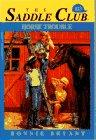 Horse Trouble, Bonnie Bryant, 0553480251