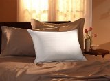 Pacific Coast Soft Pillow - 9