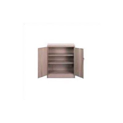 2 Door Storage Cabinet Color: Light Grey