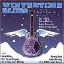 Wintertime Blues: Benefit Concert