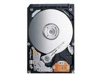 Toshiba MK3276GSX 320 GB Internal Hard Drive (MK3276GSX) ()