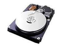 Samsung SP0802N 80GB Hard Drive