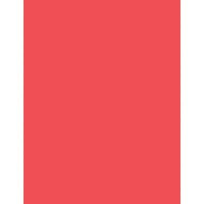 PAC104315 - Pacon Neon Bond Paper