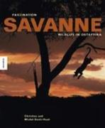 Faszination Savanne