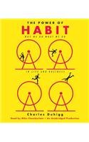 The Power of Habit: Why We Do What We Do in Life and Business [ THE POWER OF HABIT: WHY WE DO WHAT WE DO IN LIFE AND BUSINESS ] by Duhigg, Charles (Author ) on Feb-28-2012 Compact Disc
