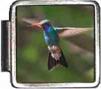 Hummingbird Italian Charm Bracelet Jewelry Link A10386 - Hummingbird Italian Charm
