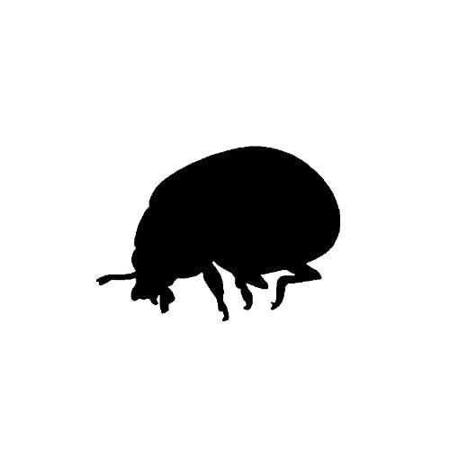 SHMAZ 12.5 Cm * 8.9 Cm Schitterende Artistieke Delicate Insect Shadow Leuke Decal Leuke Auto Sticker Zwart/Zilver