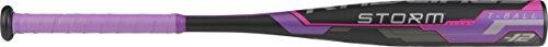 Tee Alloy Bats Ball (Rawlings Storm Alloy T-Ball Bat, 24-Inch Length, -12 Drop Weight, 12 Ounces)