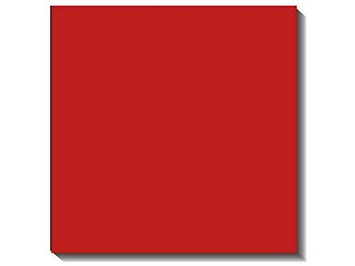 Bazzill 12 x 12 in. Cardstock Canvas Bazzill Red (25 Sheets)