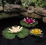 Golden Pond Floating Lily Lights by Zema