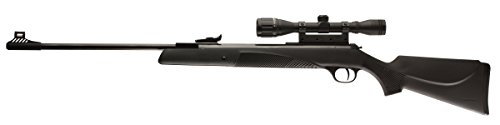 Diana RWS Model 34 P Panther Break Barrel Spring Powered Composite Stock Pellet Gun Air Rifle, .22 Caliber, Gun with 4x32mm Scope (Best Pellet For Rws 34)