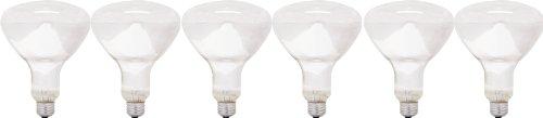 Frost Flood Incandescent Light Bulb (GE Lighting 24998 ProLine 65-Watt BR40 Flood Light Bulb, 6-Pack)
