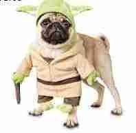 (Star Wars Yoda Illusion Dog Costume,)