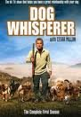 Dog Whisperer With Cesar Millan: Season 1 for sale  Delivered anywhere in USA