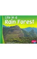 Read Online Life in a Rain Forest (Living in a Biome) pdf epub