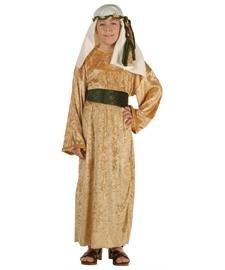 RG Costumes Child Wiseman Costume, Gold Velvet, Small/4-6 (Child Wiseman Costume)