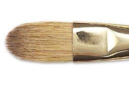 Most Popular Filbert Paintbrushes