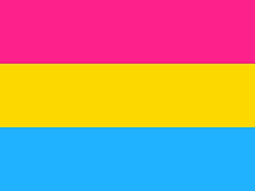 SoCal Flags Pansexual Flag from 3x5 Foot Polyester LGBT Pride - Sold by A Proud American Company - Durable 100d Material Not See Thru Like Other Brands Weather Resistant