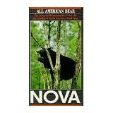 Nova: All American Bear