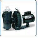 Pentair CHII-N1-1-1/2A Challenger Standard Efficiency Single Speed Up Rated High Pressure Inground Pump, 1-1/2 HP ()