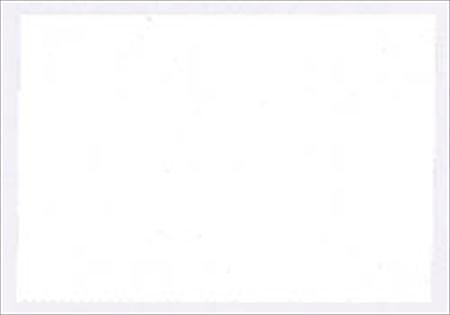 Gamblin Flake White Replacement Oil Color 37ml (Gamblin Flake White Replacement)
