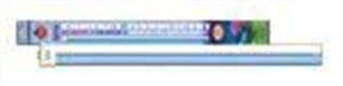 03 Lamp Actinic Fluorescent Blue (Coralife Aqueon 54076 50/50 Square Pin Compact Fluorescent Lamp, 65-Watt)