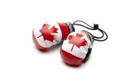 Canada Country Flag Mini Boxing Gloves to Hang Over Your Automobile Mirror Canadian... New