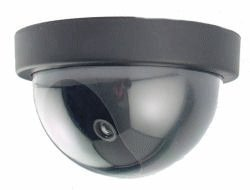 Motion Activated Dome Dummy Camera