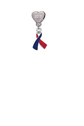 Red & Blue Awareness Ribbon Custom Year Stainless Steel Heart Bead Charm Blue Awareness Ribbon Charm