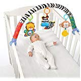 Olsine Baby Travel Play Arch Stroller/Crib Accessory,Cloth Animmal Toy and Pram Activity Bar with Rattle/Squeak/Teethers(Stripe)