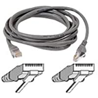 Belkin 100-Foot RJ45 CAT 5e Snagless Molded Patch Cable (Grey)