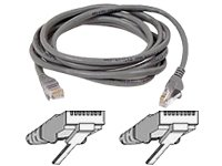 Belkin 100-Foot RJ45 CAT 5e Snagless Molded Patch Cable (Grey) ()