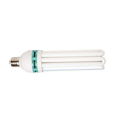 125W Daylight CFL Bulb