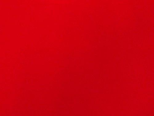 Bright Red Flocked Velvet Fabric for Upholstery Craft Curtain Drapery Material Sold by the Yard at 54 inch Wide