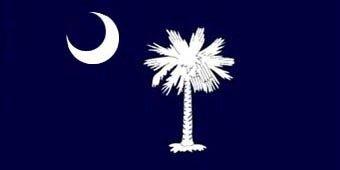 South Carolina State Tree - South Carolina Palmetto State Flag Beach Towel
