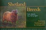 Shetland Breeds, Andro Linklater, 1889274100