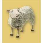 Sheep (Dog Sheep Costumes)