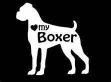 "Chase Grace Studio Love My Boxer Dogs Vinyl Decal Sticker WHITE Cars Trucks Vans SUV Laptops Wall Art 5.5"" X 5"" CGS353"
