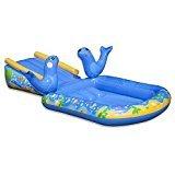 #10: BANZAI Junior My First Water Slide