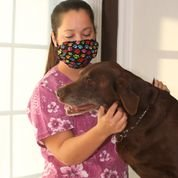 Breathe Healthy. Dust, Allergy & Flu Mask - Comfortable, Washable Face Mask - Ideal for Dog Grooming - Protection from Dander, Hair, Dust, Leopard Skin Pattern