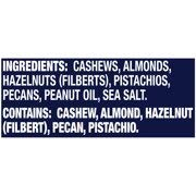 Planters Deluxe Mixed Nuts, 5 Tubs (15.25 Ounce) by Planters (Image #1)