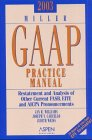 2003 Miller GAAP Practice Manual, Williams, Jane, 0735532613