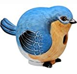 Songbird Essentials SE3880058 Bluebird Gord-O Birdhouse (Set of 1) For Sale