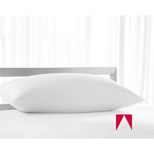 AMERICAN HOTEL REGISTER PILLOW - Registry King Deluxe Silver Hotel Pillow - Medium Density -,Four (4) Pillow Set + Bonus of 2 King Pillows. Ships within 1-3,Business Days unless there is a problem. by AMERICAN HOTEL REGISTER COMPANY (Image #1)
