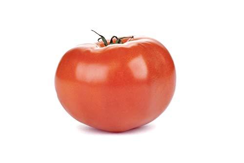 RDR Seeds 100 Beefsteak Tomato Seeds Lycopersicon Esculentum ()