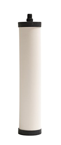 Franke FRC06 Undersink Water Filtration Filter for FRCNSTR, Chlorine Removal