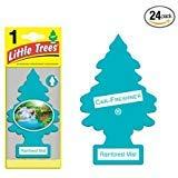 Rainforest Air Freshener (Little Trees® Car Air Fresheners Rainforest Mist Scent (24 Pack))