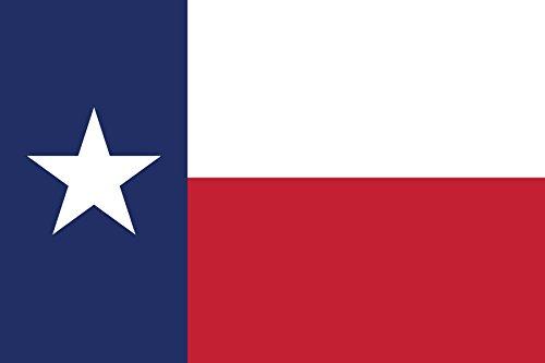 Texas Flag state bumper sticker label decal 2x1
